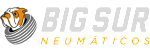 Big Sur Neumáticos